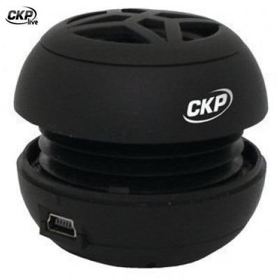 CKP Мини високоговорител CKP-SP1013,черна